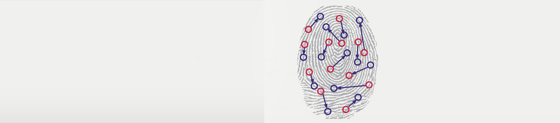 Biometric Fingerprint.png